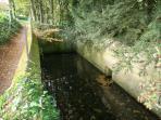 Le carré des sources qui donne naissance à la rivière du Crinchon