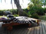 un endroit calme autour de la piscine et proche du jacuzzi avec une vue sympa sur le jardin