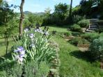 the garden - detail
