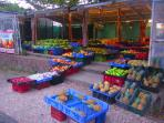 Take your daily walk to the farmers market and enjoy local vegetables and exotic fruits.