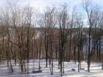 Day view from Deck - Winter