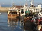 the port at Grandcamp-Maisy; you can buy fish at the market, fresh off the boats.