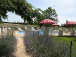 La piscine sécurisée ; sur place douche, wc, bains de soleil et parasols.