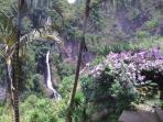 view from rooms and decks 200 ft waterfall with private trail to it !
