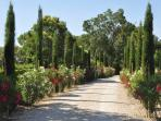 Charming villa for 5 with pool - private estate- between Saint Remy and Avignon