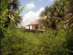 Casas de la Playa Central a complex of five tropical cottages