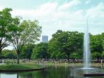 Famous Yoyogi park, 5 minutes walk from the apartment!