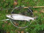 World-Class private salmon and sea trout fishing