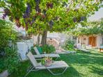 Our garden is full of grapes in the summer to taste and relax under that