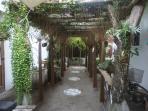 Healing Garden - take a stroll to relax