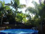 Pool and palm trees...