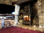 Log fire and 3D Tive