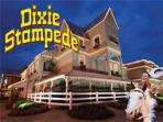 nearby Dixie Stampede