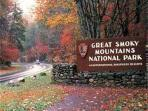 nearby Smokey Mountain National Park