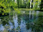 The Clitunno Springs #fontidelclitunno #leloggedisilvignano