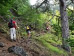 Hiking is very popular in the area with many organised guided trips