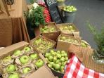 Fresh market on Saturday mornings