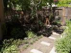 Rear garden & herb garden