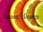Lemon&Orange - Logo