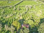 the farm from the sky
