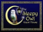 Welcome to the Sleepy Owl Guest House!