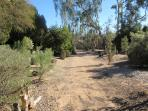 One of the paths around the 2 acres