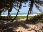 une plage encore sauvage avec un sous bois magnifique
