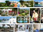 Amalfi Coast, Ischia Island, B&B, Self catering, Apartaments, Botanical garden