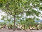 visuale dal giardino della casa , in lontananza vediamo la città di Arezzo