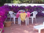 Unter einer alten Mittelmeerpinie im Schatten das Frùhstùck oder ein Brunch geniessen