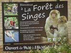 An hour away by car La Forêt des Singes is great for families and anthropologists!