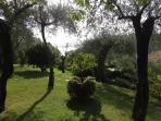 Particolari del giardino con vista mare