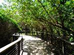 Eli Creek Boardwalk