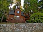 Honey Bear Lodge nestled in the trees