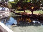 carib grounds mineral springs
