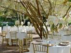 Conrad's English Knot Garden with its canopy of Crepe Myrtles is a great outdoor event venue.
