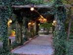 The Ivy and Jasmine Arbor is the entrance to two special areas with Roman baths and a pond.