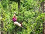 Zip lining in Canopy Ridge Farm is only 4 miles from cabin.