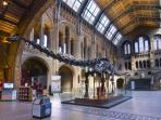 Natural History Museum, children's favourite, is 15 minutes walk away.