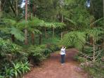 Im Park Pinhal da Paz