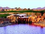 Desert Springs GC