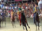 Palio, the famous horses race