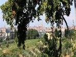 View of Siena from the balcony