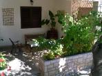 terrace in shadow of cherry tree