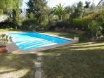Pool set in mature garden