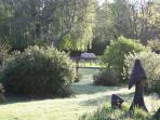 More gardens....
