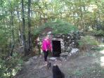 Bosque y choza para animales