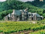 Ledson Winery and Vineyard is literally a 5 minute drive from my home, and is perfect for a picnic!!