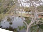 Lagoon Villa 24