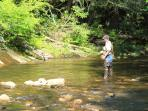 World class trout fishing in the nearby South Toe River